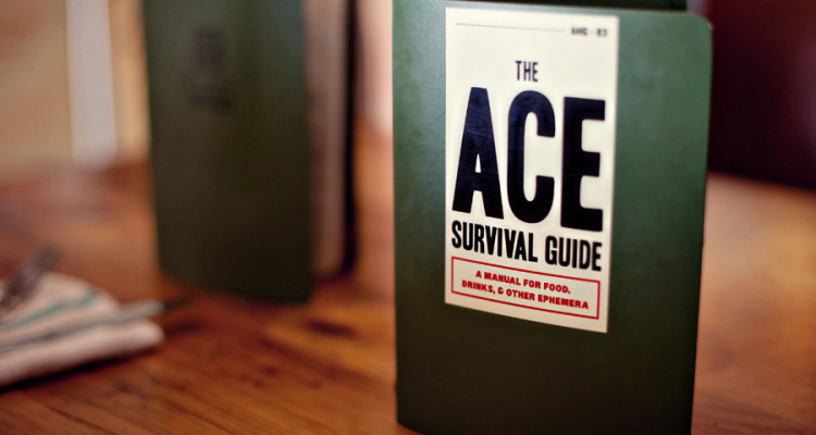 Ace Hotel Survival Guide